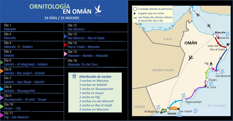 Ornitología en Omán 16d/15n