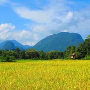Destino: Laos