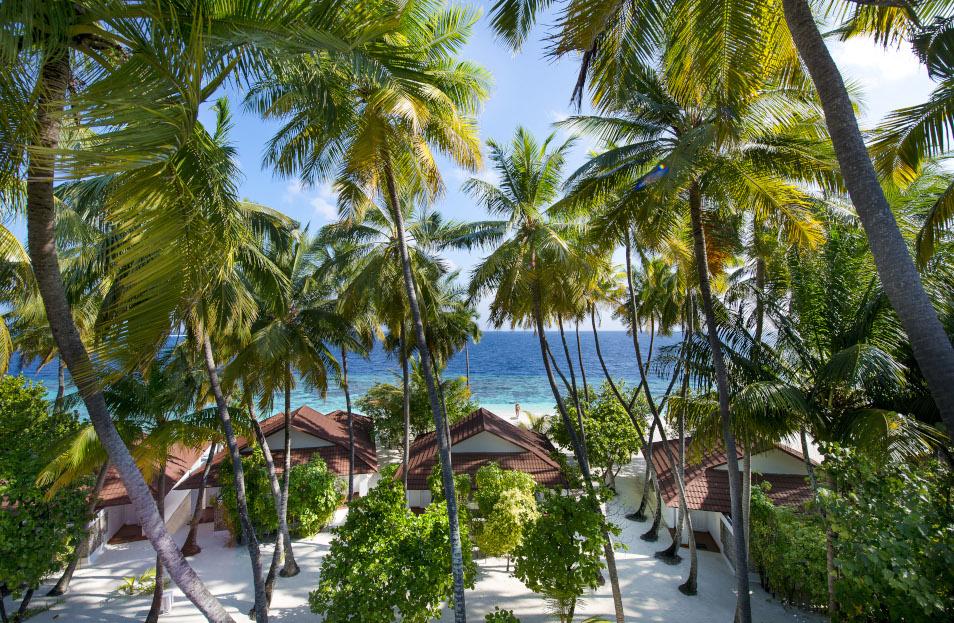 Thudufushi Jardín